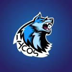 Lycos eSports Academy